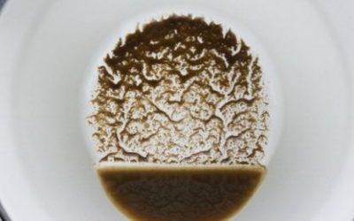 Gatanje iz kafe